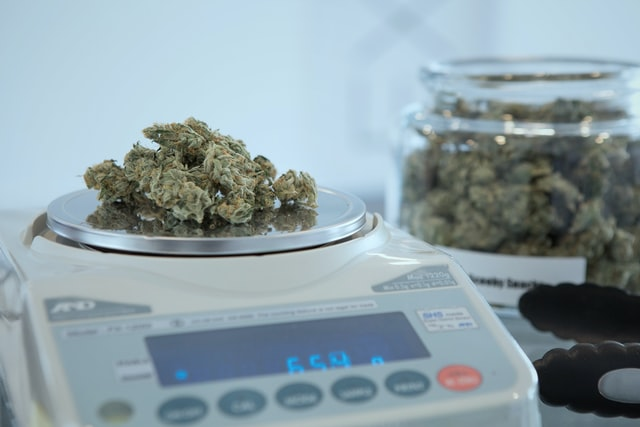 add weed jE 2EFjYaZg unsplash - Loại cân nào chính xác nhất?